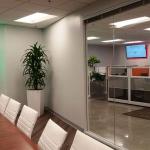 Conference Room Interior Plants