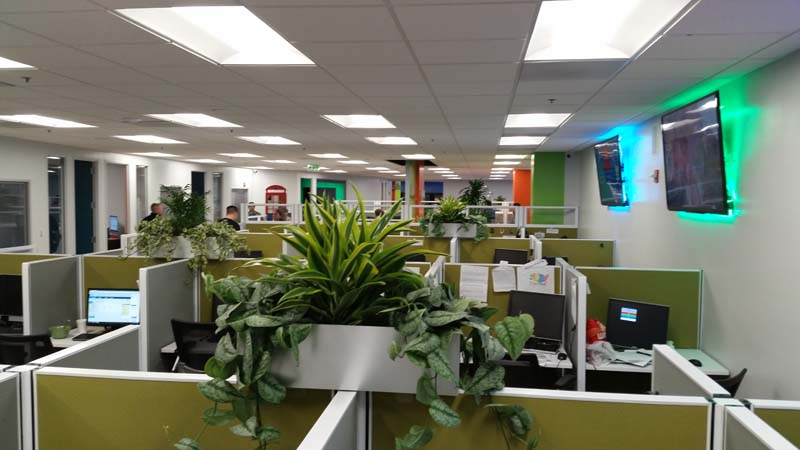 plants for office cubicle. Call Center Cubicle Topsiders Plants For Office E