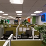 Call Center Cubicle Topsiders Plants 2