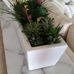 Dana-Point-Interior-Plants-Succulents-Orchids (9)