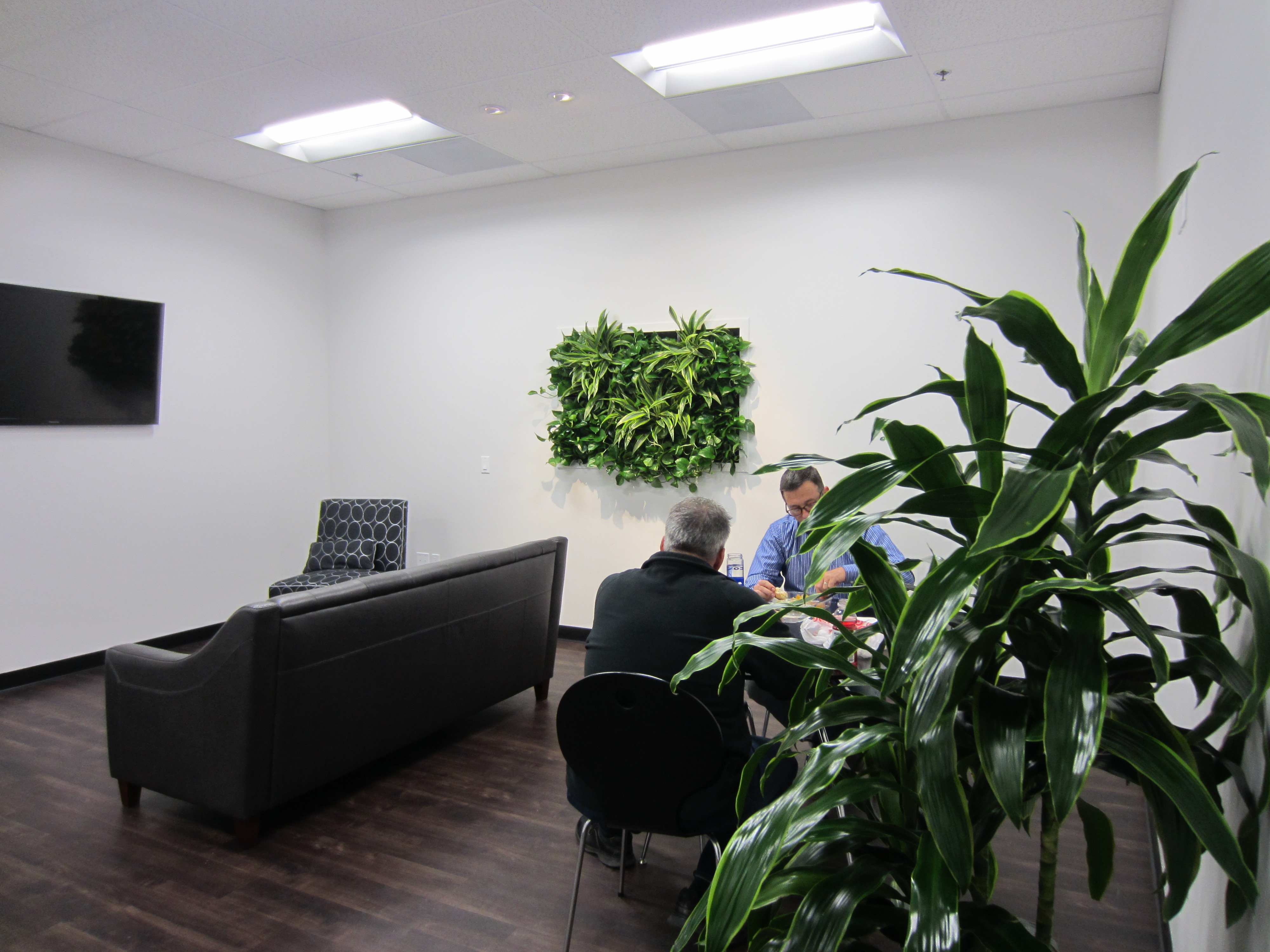 living wall portraits   plantopia   interior plant service