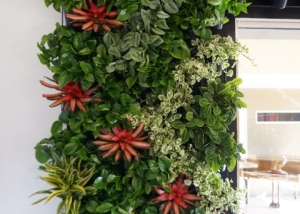 Living Wall Design