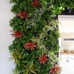Living Wall Design