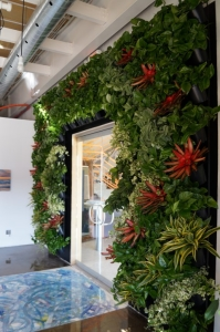 Living Wall - Green Wall
