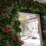 Living Wall Plant Wall Design
