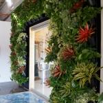 Living Wall Vertical Green