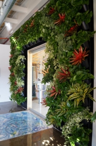 Living Wall Vertical Green