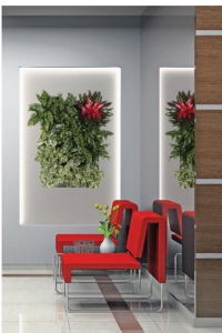 Living Wall Plant Portrait - with chairs