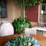 Rancho-Pacifica-Estate-Home-Indoor-Plants (2)