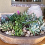 Rancho-Pacifica-Estate-Home-Indoor-Plants (4)