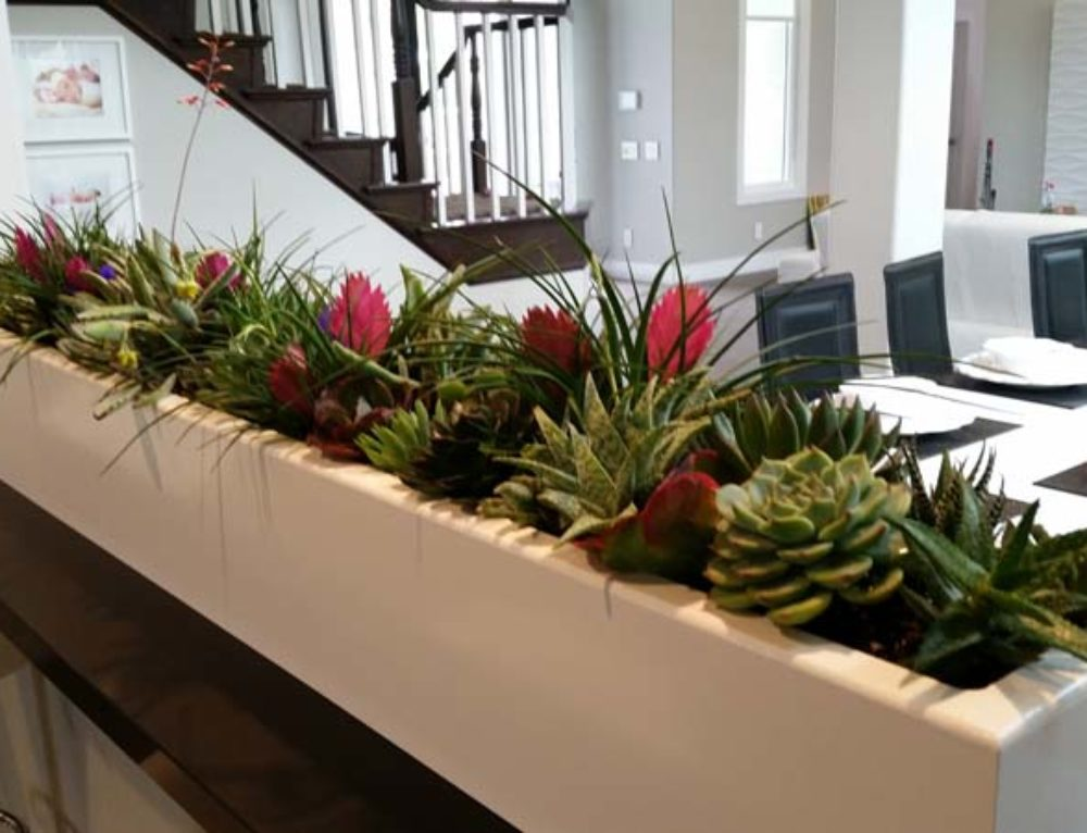 Container Planters feature texture and color that complements your architecture and decor