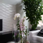 Residential-Interior-Plants-Orchids-Succulents
