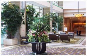 plantopia-interior-plant-service
