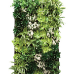 Living Wall Indoor Plants 2