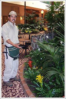 Interior Plant Service Technician