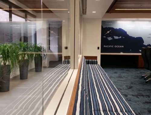Interior Plants for Credit Union