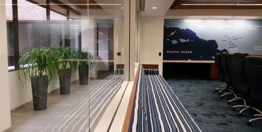 Board Room - Indoor Plants add Character