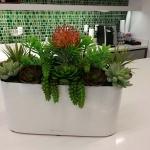 Lechuza - Silk Succulents & Protea