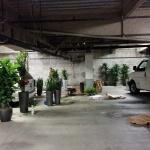 Plants-Install-Process-Underground-Parking-all-day-2-truck fulls