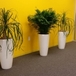 Tall Planters Trio - Modern Interior Plants