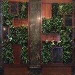 Sacramento-Interior-Plant-Service