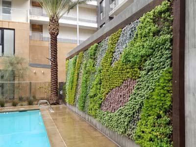 Green Wall, Garden Wall