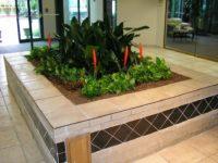 Atrium - Lobby - Plantopia - Interior Plant Service - Louisville
