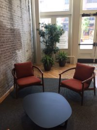 Retail - Floor Plants - Plantopia - Interior Plant Service - Louisville